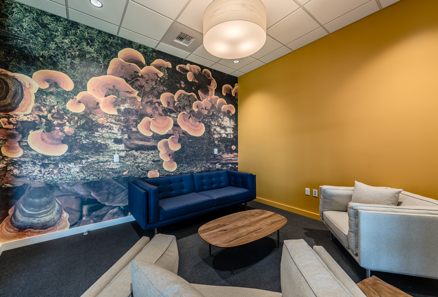TM office interior improvements